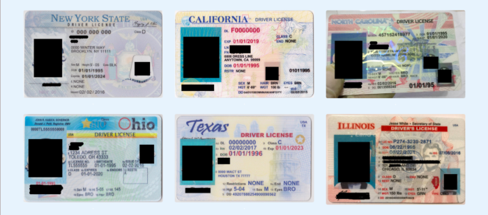 License to Drink: Technology's Impact on Fake ID Usage