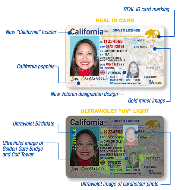 Magazine On Drink Technology's Chapbook Fake License - Id Impact Usage To